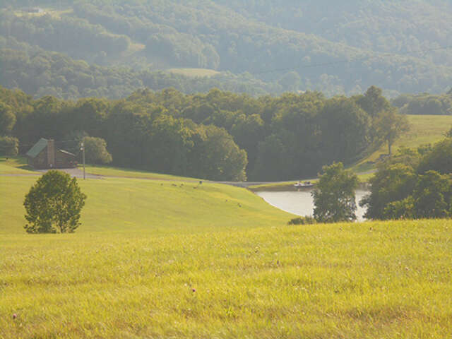 Single Family for Sale at 3633 Brandonville Pike Terra Alta, West Virginia 26764 United States