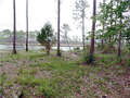 Real Estate for Sale, ListingId:44584212, location: 891 MILL RD Carrabelle 32322