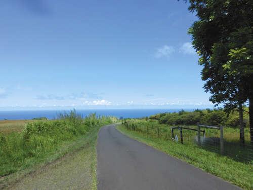 Land for Sale at Kamee Homestead Rd Ninole, Hawaii 96773 United States