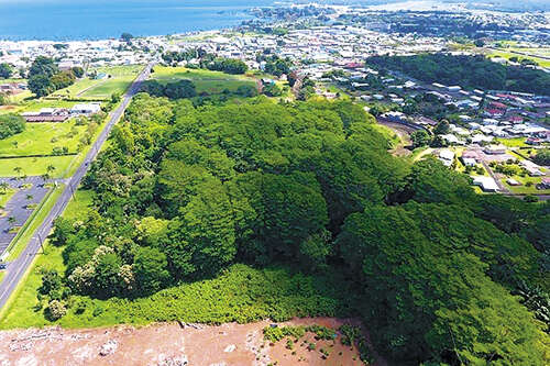 Investment for Sale at Ponahawai Hilo, Hawaii 96720 United States