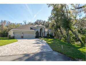 Featured Property in Tarpon Springs, FL 34688