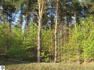 Land for Sale, ListingId:42085907, location: G-S Sawyer Road Traverse City 49685