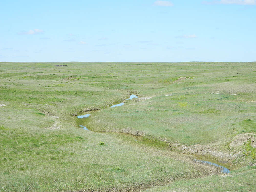 Investment for Sale at Beets Two Tops Ranch Belle Fourche, South Dakota 57717 United States