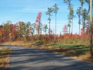 Land for Sale, ListingId:35262808, location: 23 Raintree Drive Littleton 27850