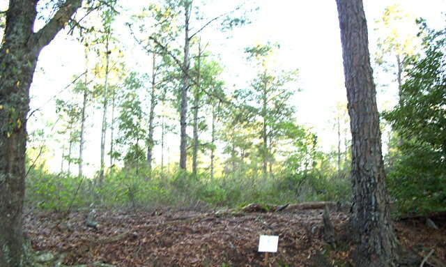 Real Estate for Sale, ListingId:34364649, location: Lot # 2 Sweetwater Moultrie 31768