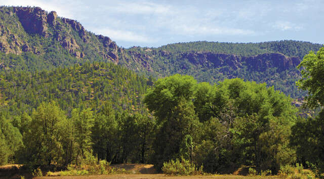 Additional photo for property listing at Payson 80 Acres  Payson, Arizona 85541 United States