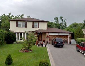 Featured Property in Brampton, ON L6T 1Z4
