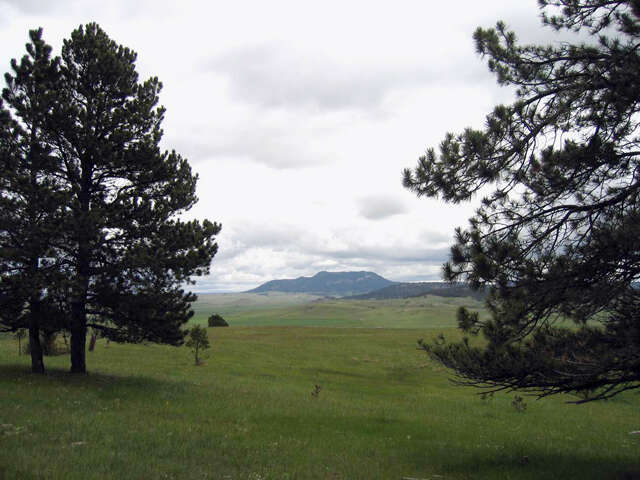 Additional photo for property listing at Broad Axe Rd  Sundance, Wyoming 82729 United States