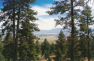 Land for Sale, ListingId:29563836, location: 160 Summit Ridge (Lot 42) Gardnerville 89460
