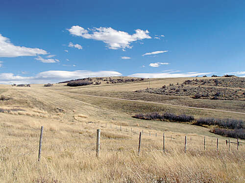 Land for Sale at 5455 Rcr 78 Hayden, Colorado 81639 United States