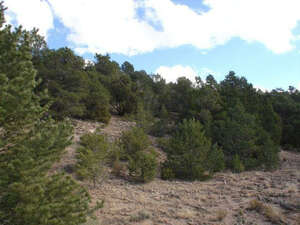 Land for Sale, ListingId:24550215, location: long view place Sandia Park 87047