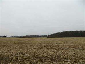 Land for Sale, ListingId:55774377, location: 0 State Road 9 Greenfield 46140