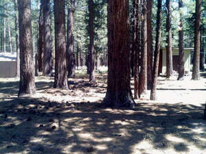 Land for Sale, ListingId:39601429, location: 2578 Fountain Avenue South Lake Tahoe 96150