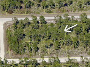 Real Estate for Sale, ListingId: 31403815, Lehigh Acres, FL  33974