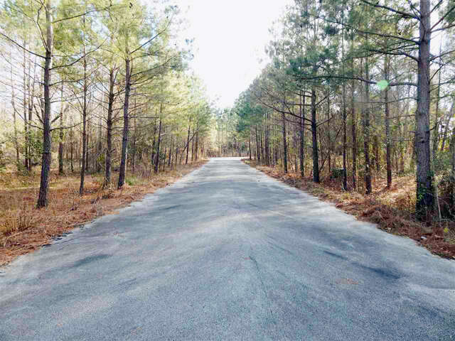 Home Listing at 0 FM 2908, TYLER, TX