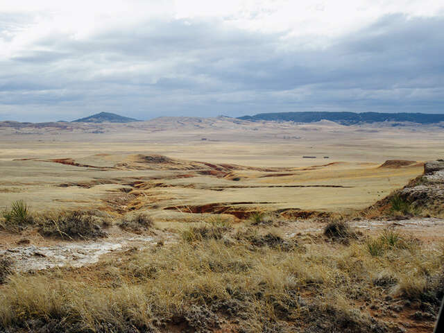 Investment for Sale at Black Flats Ranch. Sundance, Wyoming 82729 United States