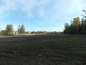 Land for Sale, ListingId:40860961, location: L1A Blexes Avenue Sterling 99672