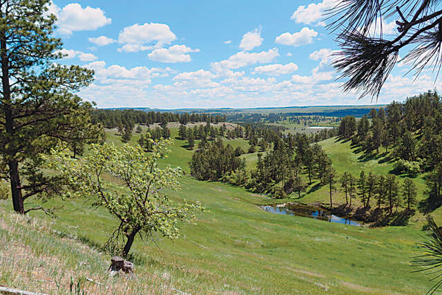Investment for Sale at 1449 New Haven Rd Hulett, Wyoming 82720 United States
