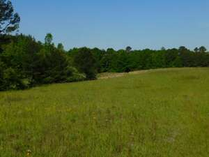 Land for Sale, ListingId:51503132, location: 39083 PERRETT RD Hazlehurst 39083
