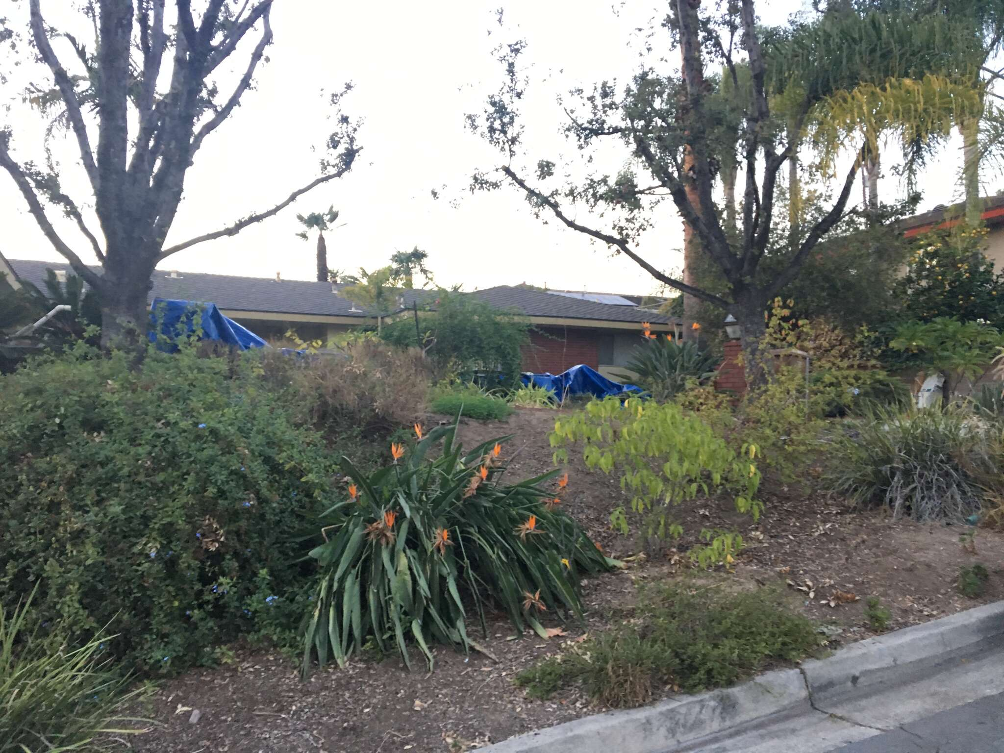 Single Family for Sale at 1319 Kroeger Ave Fullerton, California 92831 United States