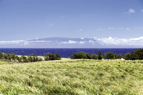 Land for Sale at Hoea Road Hawi, Hawaii 96719 United States