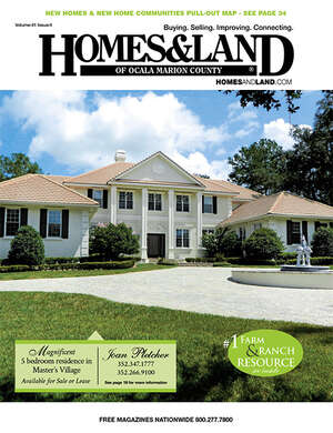 HOMES & LAND Magazine Cover. Vol. 41, Issue 04, Page 19.