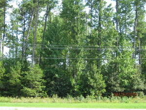 Land for Sale, ListingId:30900213, location: Rt. 33 LEWIS B. PULLER MEMORIAL Highway Gloucester 23061