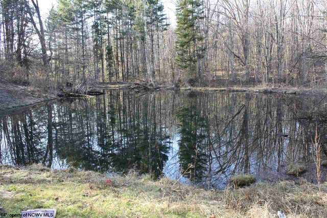 Viewing Image 7