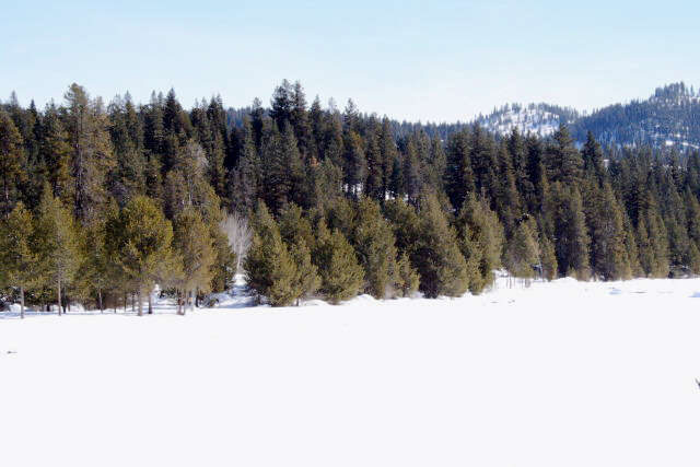 Land for Sale at 9636 Packer John Road Cascade, Idaho 83611 United States