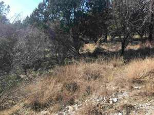 Land for Sale, ListingId:49502213, location: K9068 Ponderosa Bend Horseshoe Bay 78657