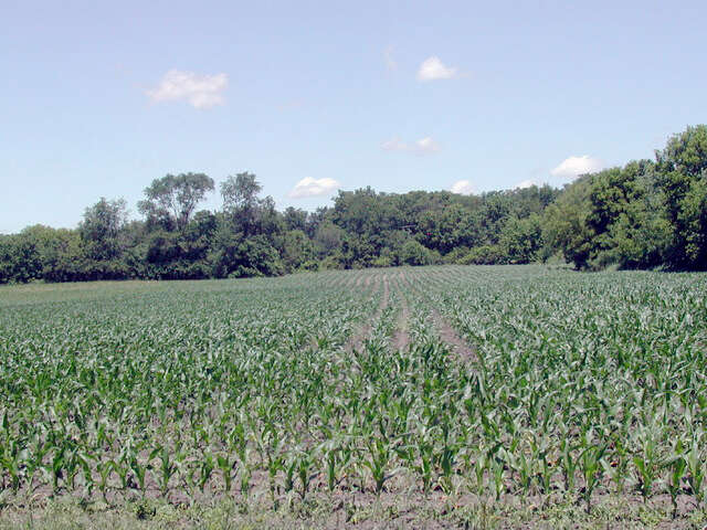 Land for Sale at 21118 River Road Marengo, Illinois 60152 United States