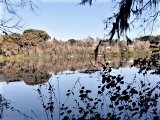Land for Sale at E Lake Gem Rd Mount Dora, Florida 32757 United States