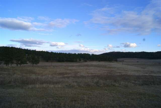 Real Estate for Sale, ListingId:45824299, location: tbd Thunder Road Custer 57730