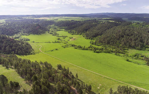 Investment for Sale at Willey Ranch Blacktail Creek Road Hulett, Wyoming 82720 United States