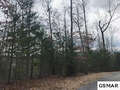 Real Estate for Sale, ListingId:49745591, location: Lot#63 Cedar Falls Way Sevierville 37876