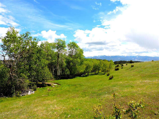 Land for Sale at 5920 Mt Hwy 41 Whitehall, Montana 59759 United States