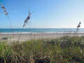 Real Estate for Sale, ListingId:30179210, location: 5221 Highway A1a Melbourne Beach 32951