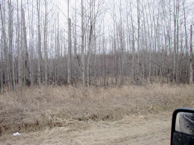 Featured Property in DARWELL, AB, T0E 0L0