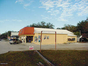 Featured Property in Ocklawaha, FL 32179