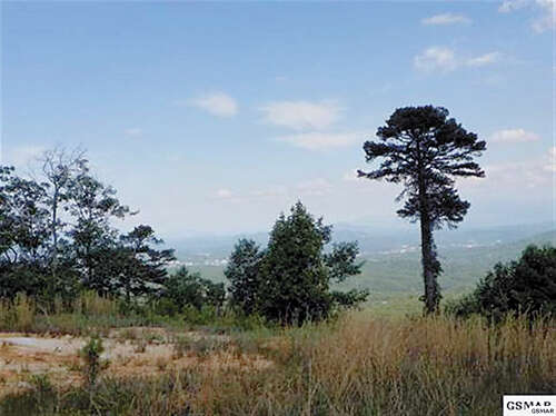 Land for Sale at Bluff Mountain Road Sevierville, Tennessee 37862 United States