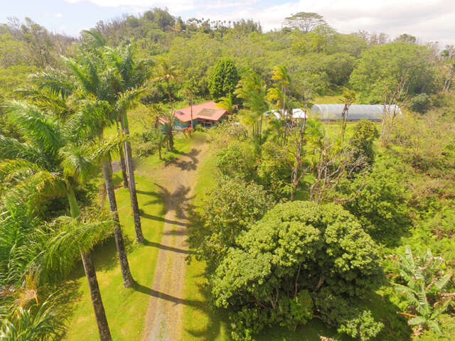 Single Family for Sale at 13-3874 Ala Ili Rd Pahoa, Hawaii 96778 United States
