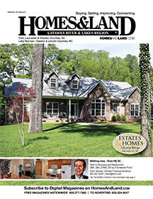 HOMES & LAND Magazine Cover. Vol. 20, Issue 08, Page 1.