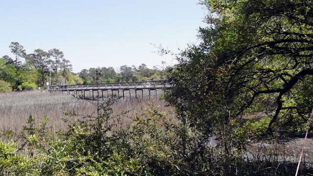 Home Listing at 0 Fishermans Bend, MT PLEASANT, SC