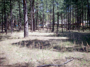 Commercial Property for Sale, ListingId:38593200, location: 1230 MECHEM DR Ruidoso 88345