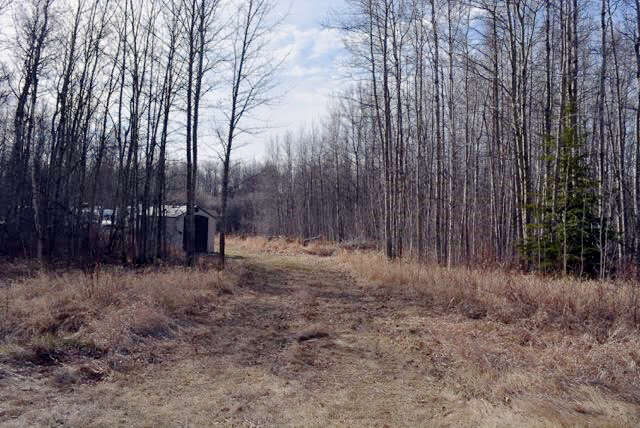 Featured Property in PARKLAND COUNTY, AB, T0E 0H0
