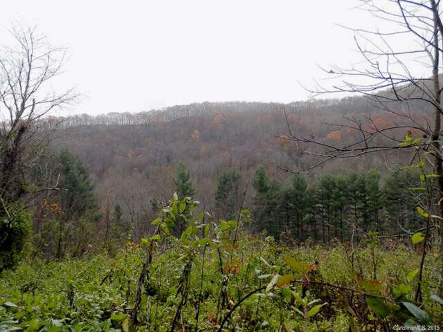 Additional photo for property listing at 620 Falling Waters Road  Waynesville, North Carolina 28786 United States
