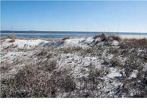 Real Estate for Sale, ListingId: 37581928, Carrabelle, FL  32322