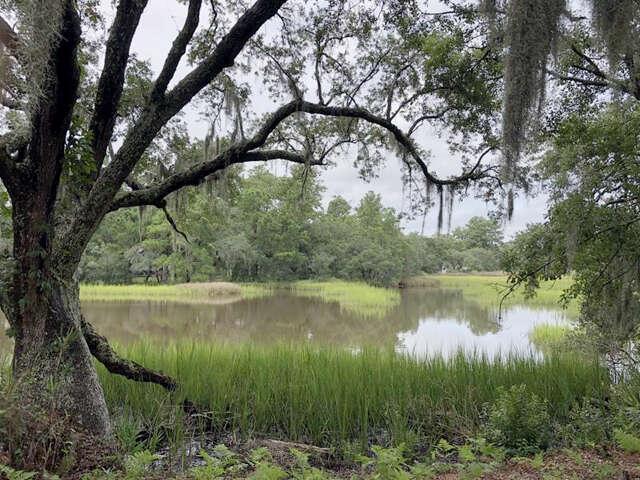 Single Family for Sale at 50 Chadwick Drive Charleston, South Carolina 29407 United States