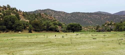 Land for Sale at Payson 80 Acres Payson, Arizona 85541 United States