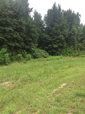 Land for Sale, ListingId:53698695, location: Lot 18 GREEN TRACE CV Ridgeland 39157